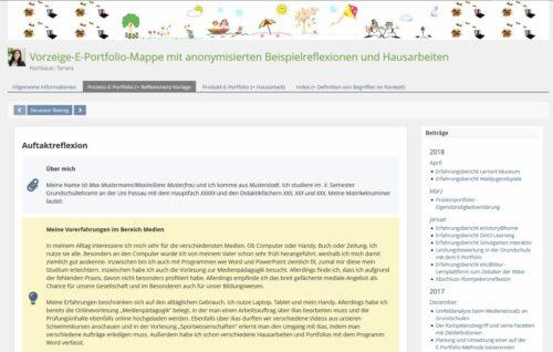 Die Abbildung zeigt ein anonymisiertes Beispiel für ein e-Portfolio zum IST-Zustand.